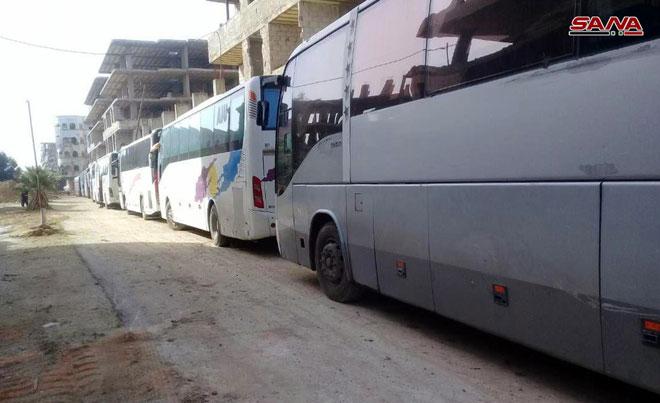 Bus Teroris
